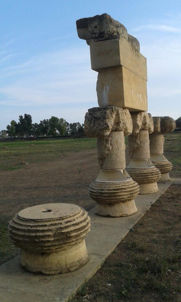 metaponto arqueologia