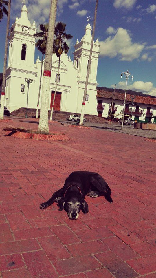 Plaza-principal-parque-de-Guaduas-Cundinamarca-Colombia