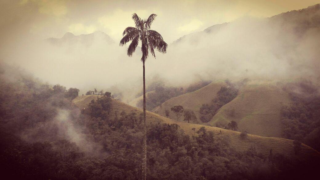 blog-meditación-viajes-espiritualidad-sur-america