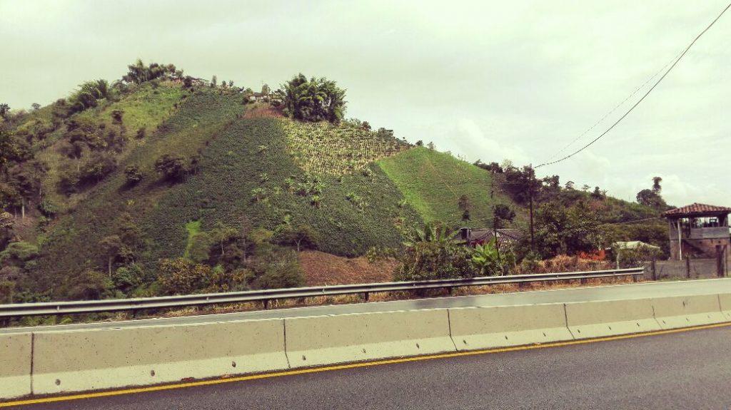 autopista-cafe-manizales-pereira-colombia